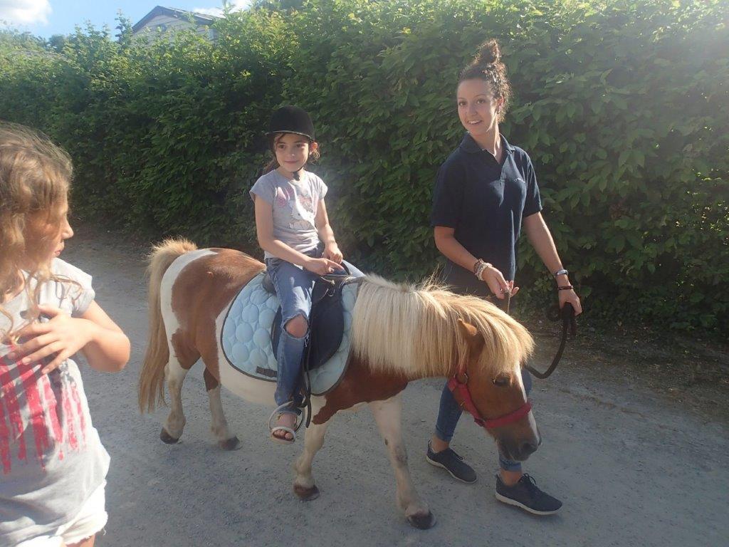 poney de la ferme du camping en Vendée