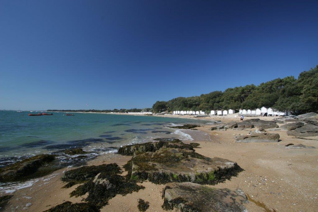 plage île de Noirmouter