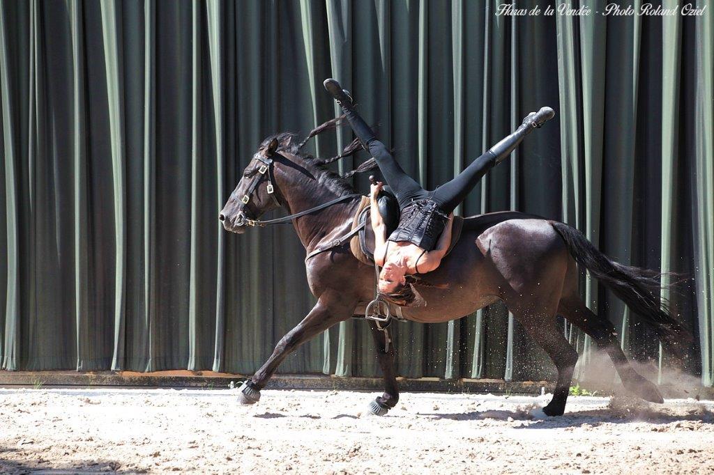 acrobatie cheval
