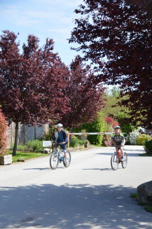 Location de vélos au camping 3 étoiles